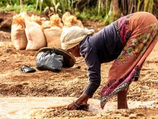salaire moyen malgache